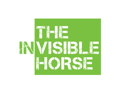 The Invisible Horse - World Horse Welfare