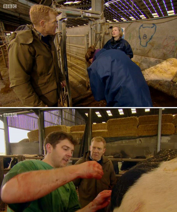 BBC Countryfile George Veterinary Group