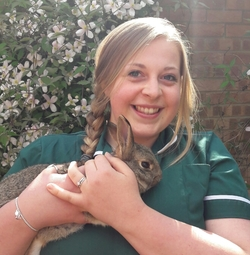 RVN Hayley Hughes at The George Veterinary Hospital
